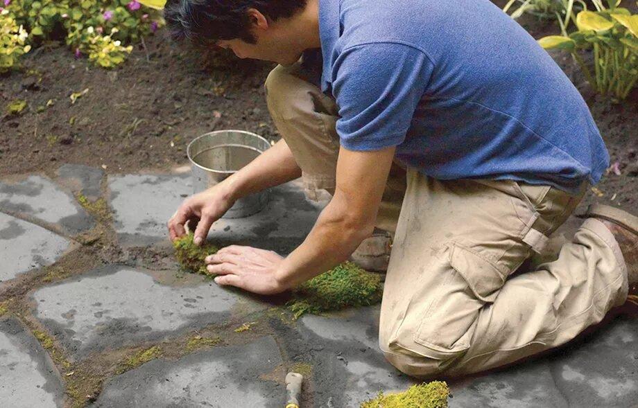 قرار دادن خره بین سنگ ها